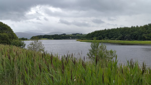 wicklow-blessington-trail2