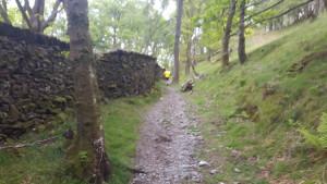coniston-half-marathon-climb