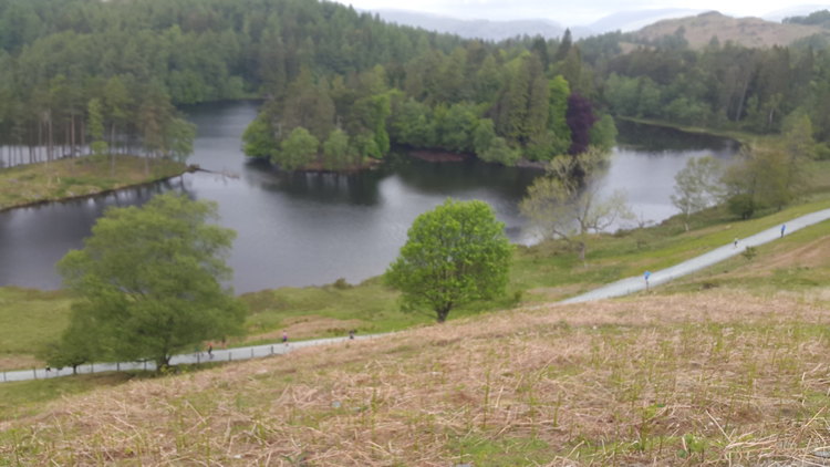 coniston-tarn-hows-from-hill-fell