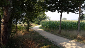 santiago-trail1