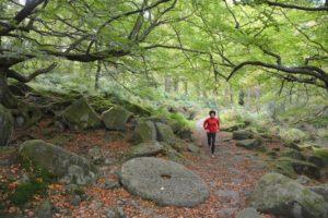 jen-benson-woodland-trail